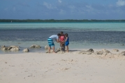 <h5>Searching for Sea Shells on the Beach Sorobon</h5><p></p>