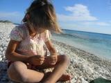 <h5>Pink Beach Bonaire Coral on the Beach</h5><p></p>
