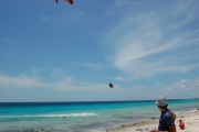 <h5>Learn to kite surf and windsurf on Bonaire!</h5><p>																																																																																																																																																																																																												</p>