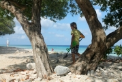 <h5>Donkey Beach Bonaire - shade of Divi Divi trees</h5><p></p>
