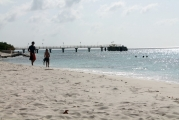 <h5>Snorkelers coming in from an afternoon swim</h5><p></p>