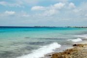 <h5>Rugged Coastline Dive Sites</h5>
