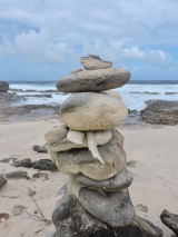 <h5>Beach Art Bonaire</h5><p>																																																																																					</p>