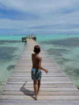 <h5>The Pier At Sorobon Beach Resort</h5><p>																																																																																					</p>