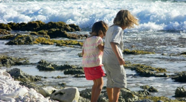 exploring the beaches of bonaire with kids