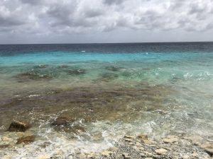 keep bonaire beautiful dive clean-up