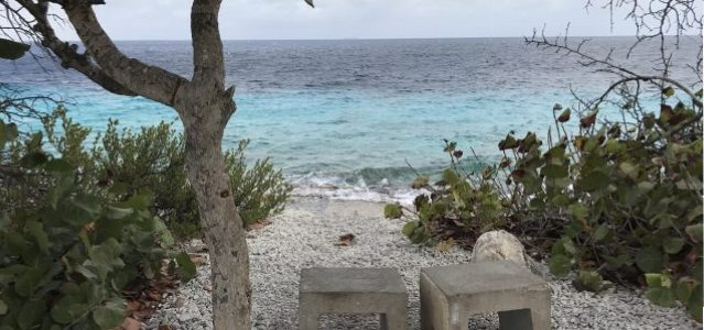 Tolo: Off-The-Beaten-Path Beach on Bonaire