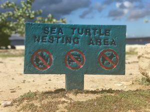 signs of bonaire sea turtle nesting area