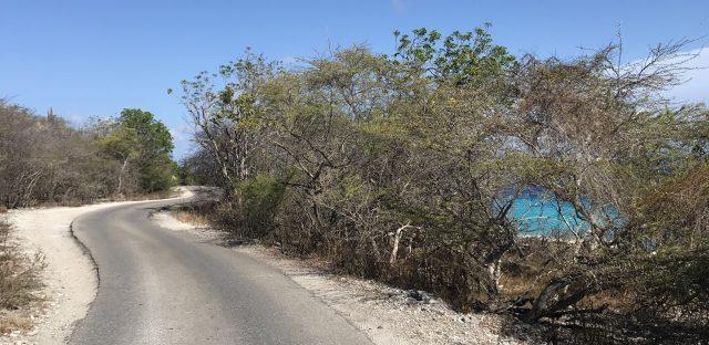 running jogging on Bonaire vacation