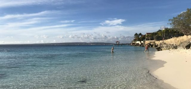 Where to go on your first day on Bonaire? Bachelor's Beach