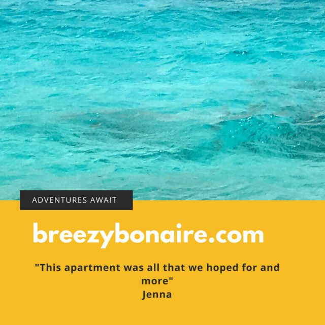 guest review breezybonaire