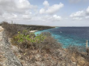 queen's highway bonaire scenery; off the beaten path bonaire