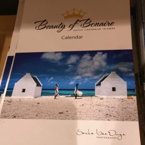 souvenir calendars available at the grocery store