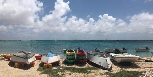 Lac Cai Bonaire