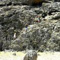 kids climbing on rocks in Slagbaai National Park Bonaire