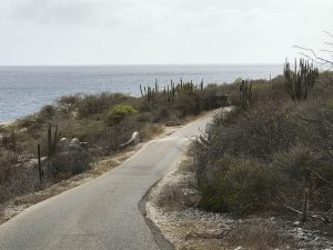 where to go running on bonaire