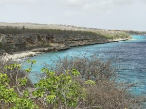 where to go jogging on bonaire