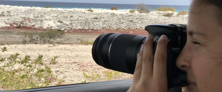 3 Great Places You Must Take Your Camera on Bonaire